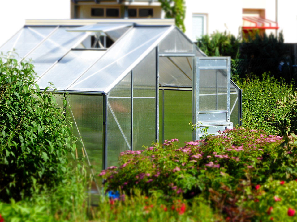Greenhouse Gardening for beginners - Greenhouse in a green garden