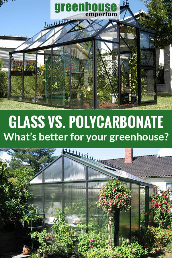 Above is a glass greenhouse with plants inside. Below is a Polycarbonate greenhouse surrounded with plants. The text in the middle says Glass vs Polycarbonate What's better for your Greenhouse?