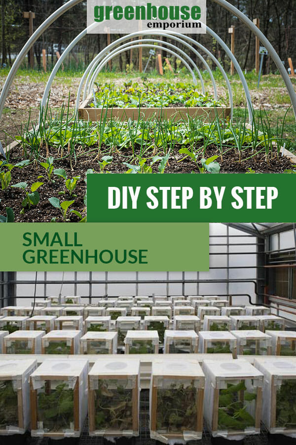 Two small DIY greenhouse types with the text: DIY Step by Step - Small Greenhouse