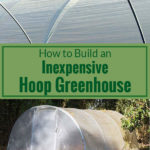 Greenhouse covering and a hoop greenhouse with text: How to build an inexpensive hoop greenhouse