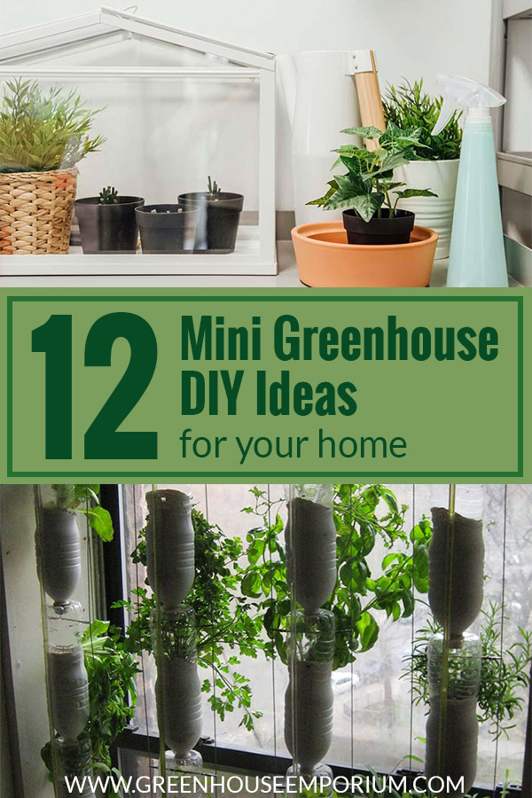 A mini greenhouse at the top and a window farm made of bottles at the bottom with the text: 12 Mini Greenhouse DIY Ideas for your home