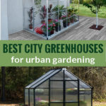 Small lean-to greenhouse and patio greenhouse with the text: Best City Greenhouses for urban gardening
