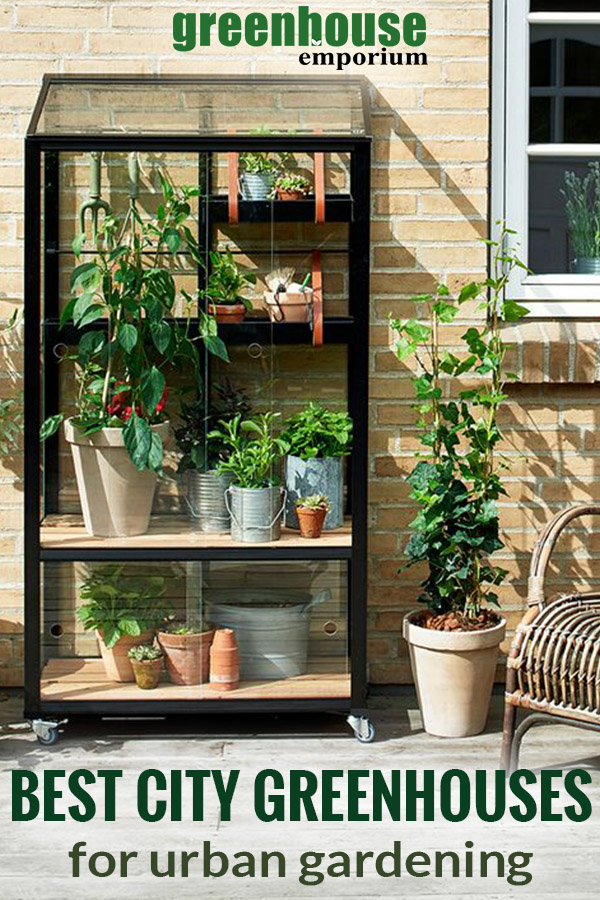 A mini glass greenhouse with text: best city greenhouses for urban gardening