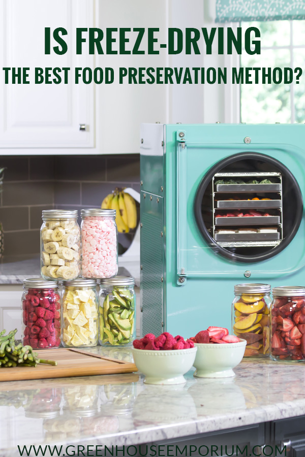 Blue Freeze-Dryer with freeze-dried food on the counter and the text: Is Freeze-Drying The Best Food Preservation Method?