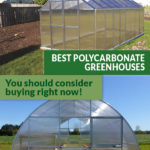 Two Polycarbonate greenhouses with the text: Best Polycarbonate Greenhouses - You should consider buying right now