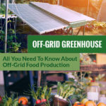 Solar panels in a garden and a photo of veggies in a basket with the text: Off-Grid Greenhouse - All you need to know about off-grid food production