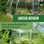 Tunnel greenhouse with slide-up walls and the text: Arcus Review - Best Greenhouse for tomato lovers?