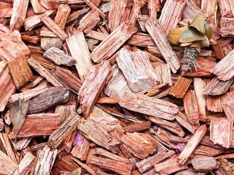 Brown Wood chips used as mulch