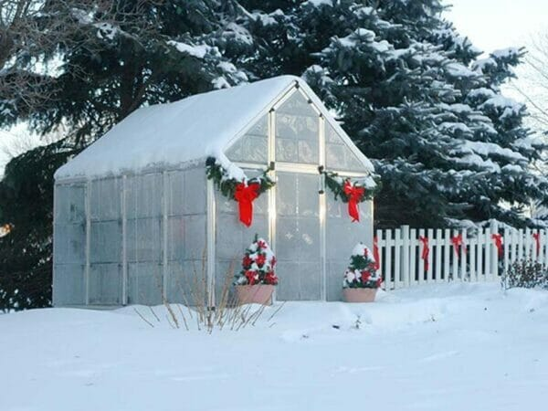 Palram 6ft x 8ft Snap & Grow Hobby Greenhouse - covered in snow