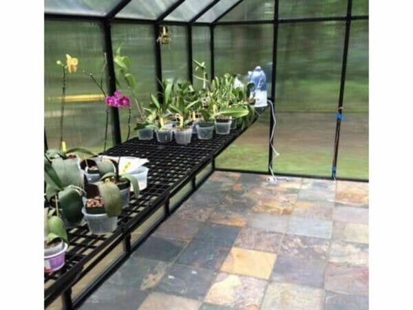 Riverstone Monticello Greenhouse 8x20 - Premium Package - interior view with plants and accessories