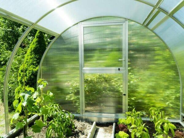 Interior view of Arcus 3 Greenhouse - Closed door - open left side panels - plants inside