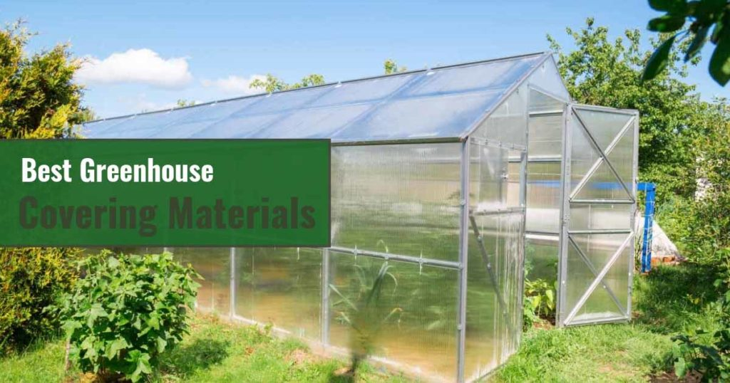 Greenhouse with Plants Inside with Text on the left : Best Greenhouse Covering Materials