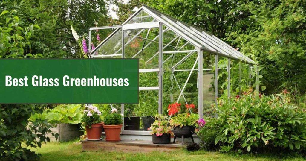 best glass greenhouse in garden