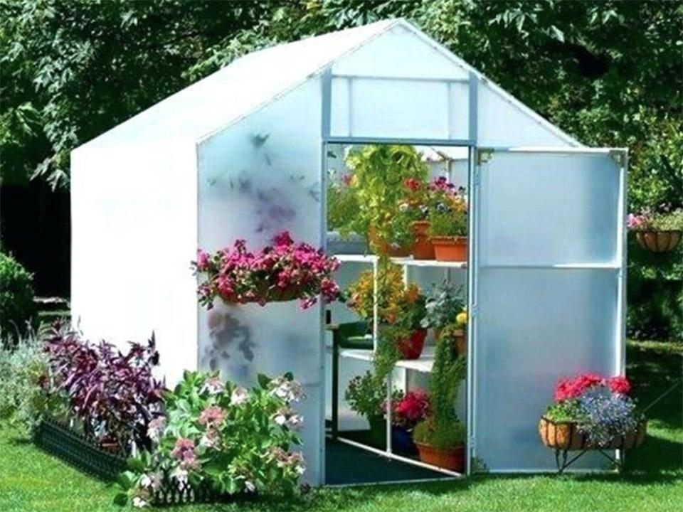 Open door Solexx 8ft x 12ft Garden Master Greenhouse G-512 with plants inside