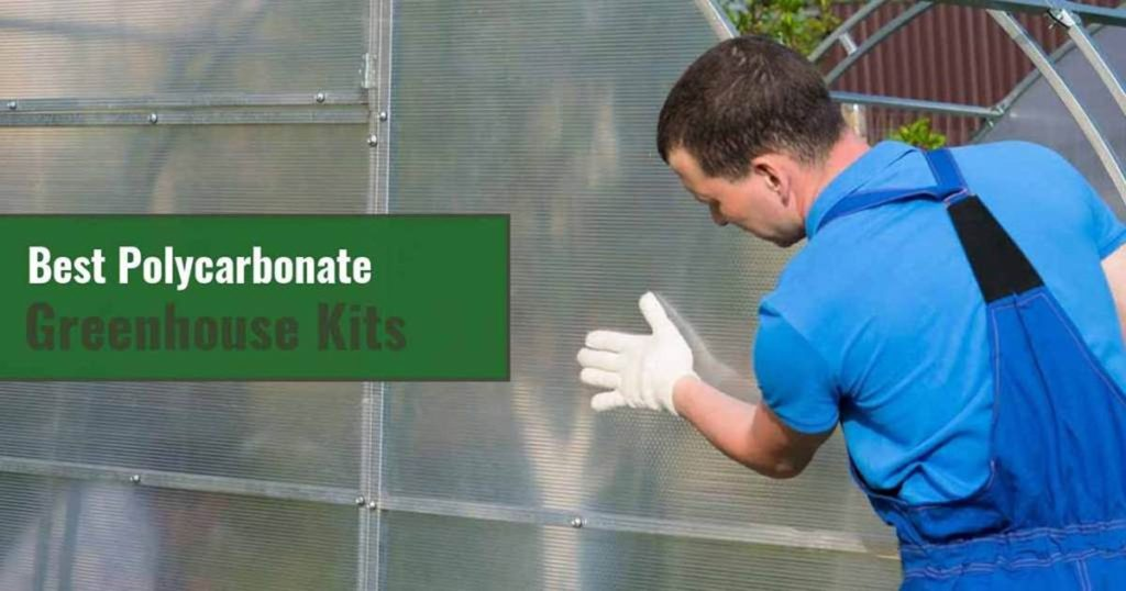 A man installing Polycarbonate panels on a greenhouse with texts on the left side green box: Best Polycarbonate Greenhouse Kits