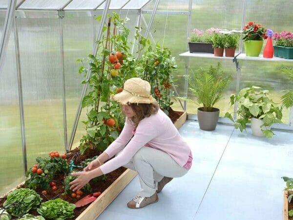 Palram Essence 8ft x 12ft Hobby Greenhouse - HG5812 - interior view - woman gardening