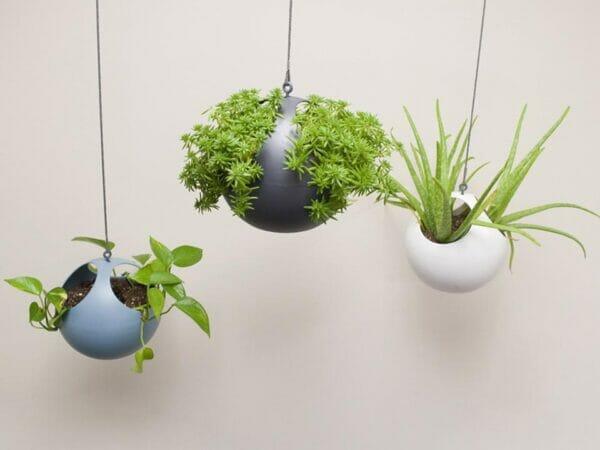 Three ELHO Euro Hanging Planters