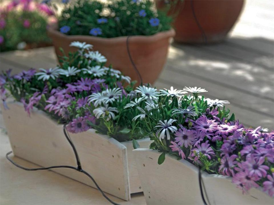 Drip Irrigation System set up on flower pots