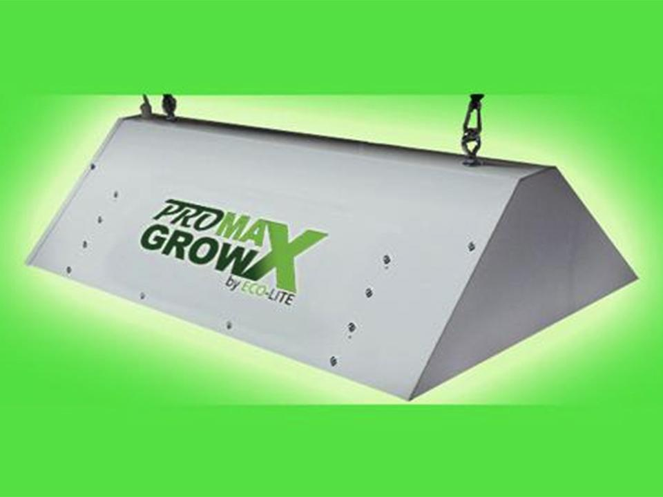 Greenhouse Grow Light in a green background