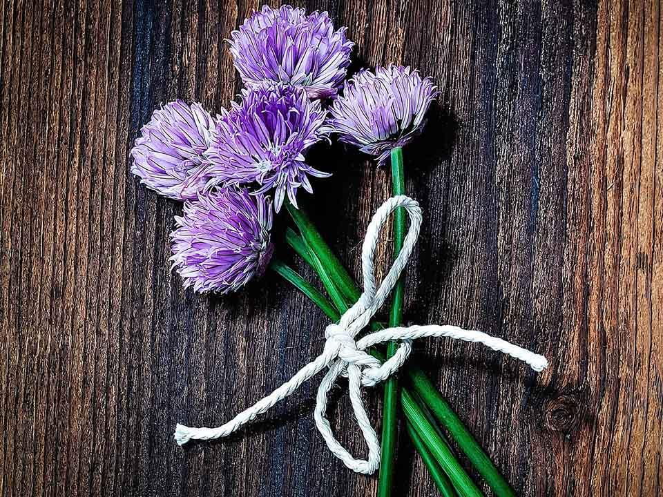 Chives flowers tied beautifully