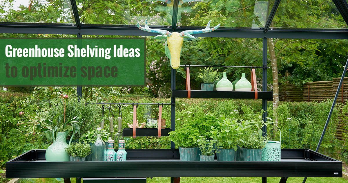 Greenhouse Shelving Ideas to Optimize Space