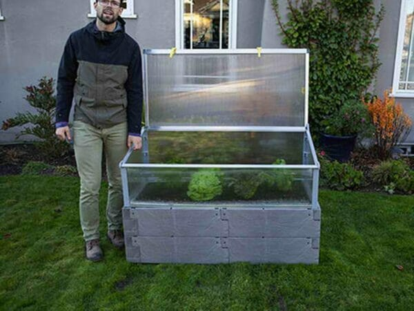 Grey Timber Raised Bed with Opened Year Round Cold Frame and Human for Scale