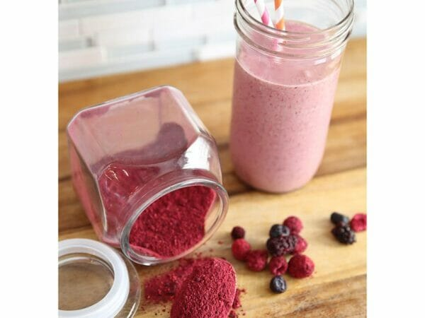 Harvest Right Freeze Dried Raspberry and Blueberry Milkshake