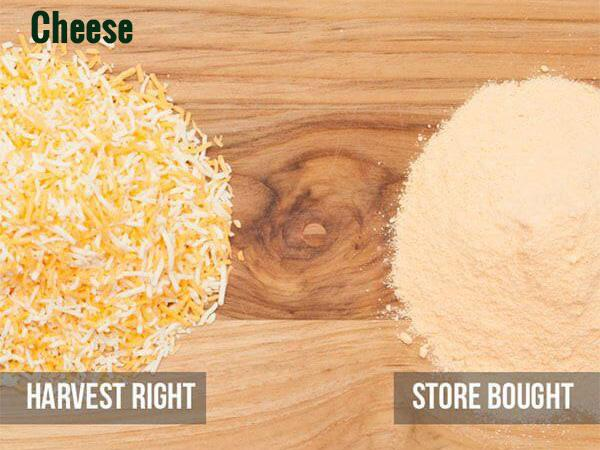 Comparison of Harvest Right frozen dried shredded cheese and store bought cheese