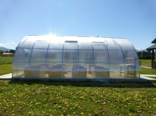 Hoklartherm Riga XL 9 Greenhouse 14x30 side view. Field set up showing raised beds inside