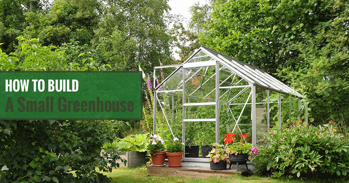 Greenhouse in a garden with the text: How to Build A Small Greenhouse