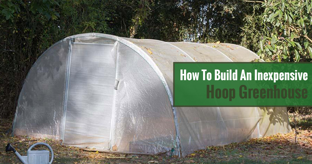 How to Build an Inexpensive Hoop Greenhouse