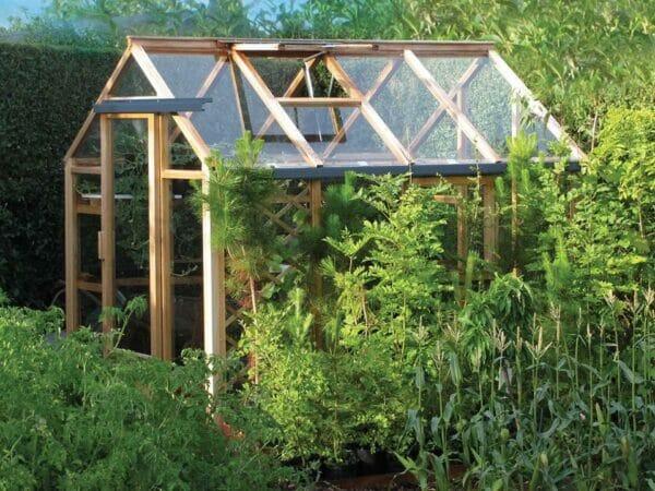 Juliana Classic Greenhouse 6ft x 8ft - closed door - open roof vent - in a garden