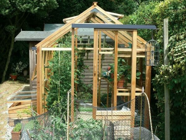 Juliana Classic Greenhouse 6ft x 8ft - front view - open door, roof vent and window - with plants inside - in a garden
