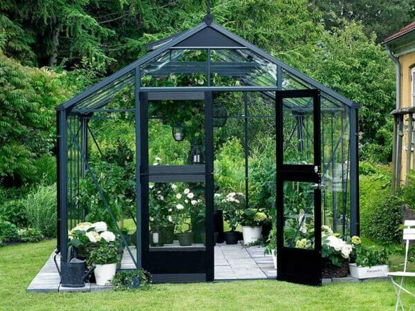 Juliana Premium Greenhouse 9ft x 14ft Anthracite 3mm safety glass with plants inside. Front View Open Door