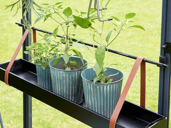 Medium Juliana Hanging Shelf with Leather Straps and three plant pots