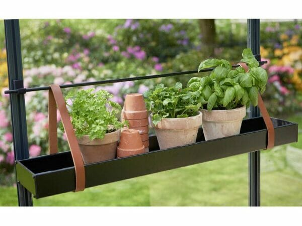 Medium Juliana Hanging Shelf with Leather Straps with plants