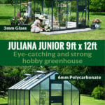 Two Juliana Junior 9ft x 12ft with the text: Juliana Junior 9ft x 12ft - Eye-catching and strong hobby greenhouse