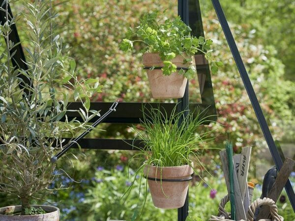 Two Juliana Greenhouse Plant Pot & Tool Holders with plant pots, installed in a greenhouse