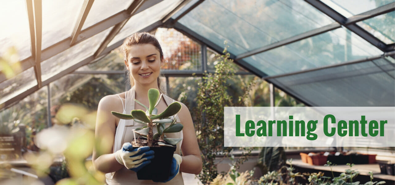 Woman with a pot in her hands inside a greenhouse with the text overlay: Learning Center