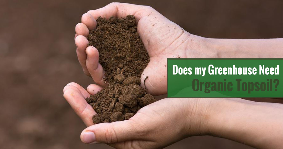 Does my Greenhouse Need Organic Topsoil?