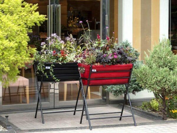 Red and Black Poppy Go VegTrug with plants