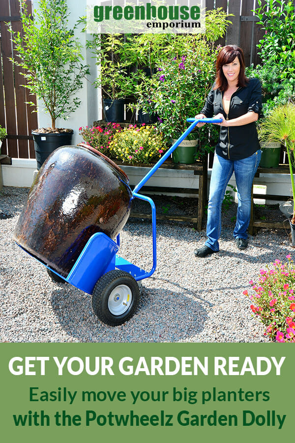 A woman pushing the Potwheelz Garden Dolly with a heavy huge pot on it and the text: Get your Garden Ready - Easily move your big planters with the Potwheelz Garden Dolly