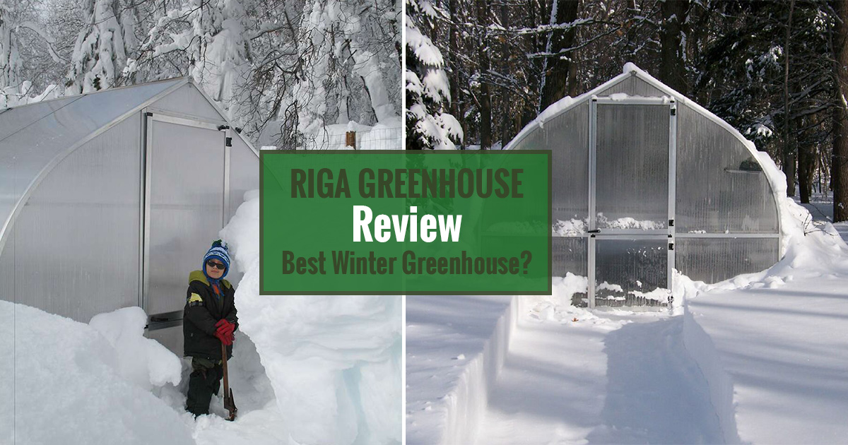 Two images of the Riga Greenhouse with snow and text overlay: Riga Greenhouse Review - Best Winter Greenhouse?