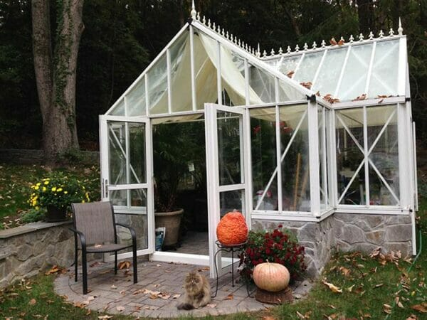 Frontal side view of the Janssens T-Shaped Royal Victorian Antique Orangerie with open double swinging door