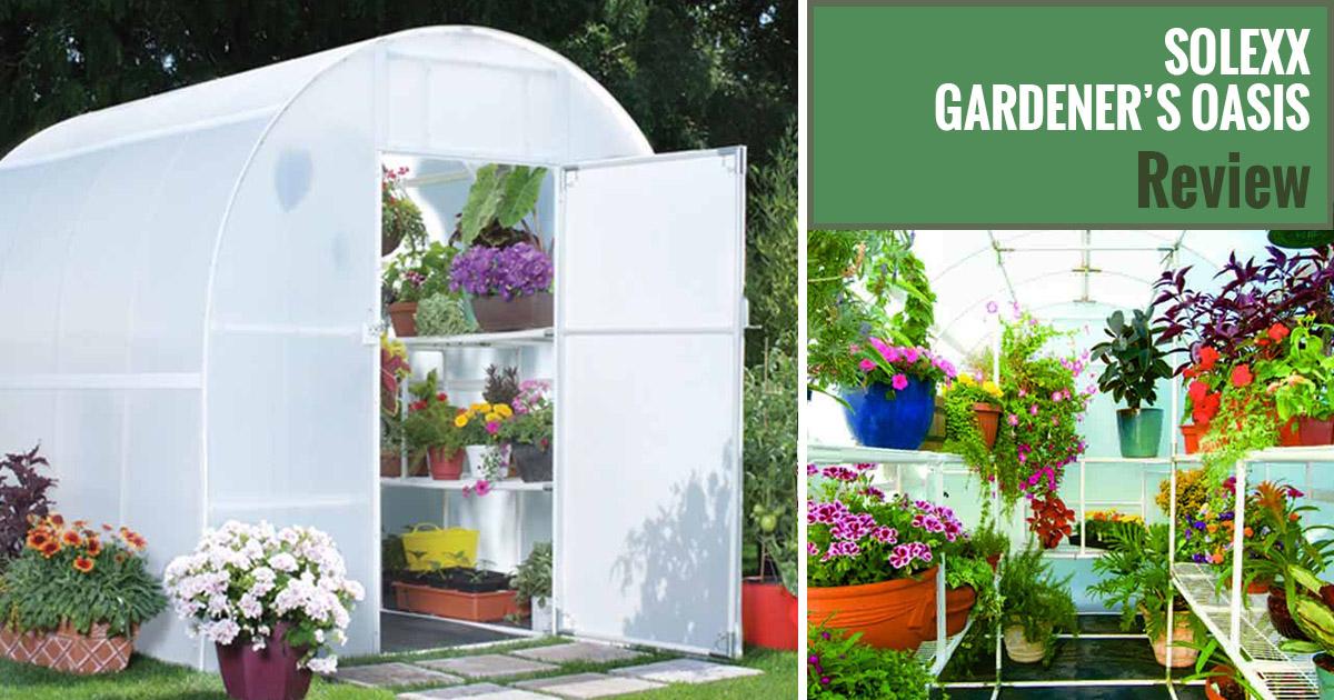 Solexx Gardeners Oasis Greenhouse Review