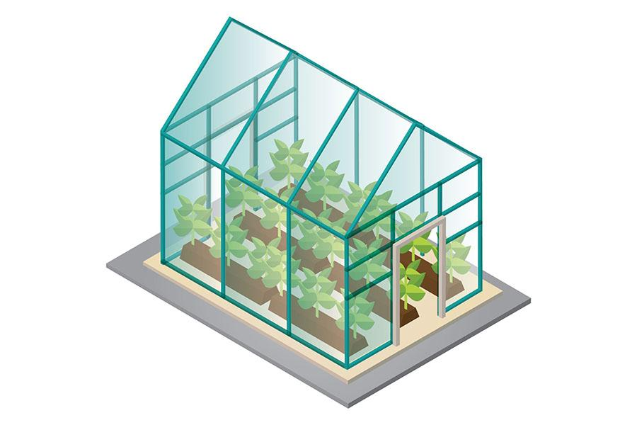 DIY graphic of a tabletop greenhouse made of picture frames