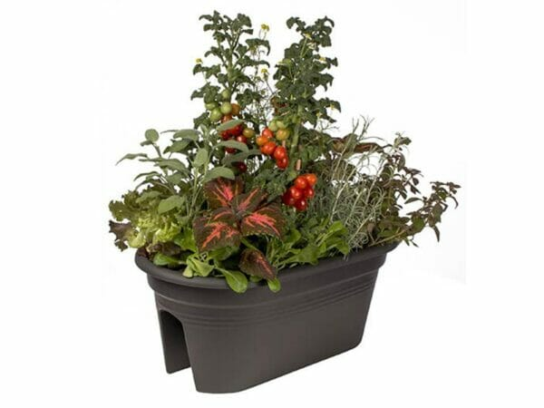 Black ELHO Bridge Planter with plants
