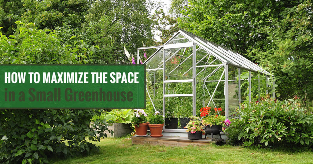 Small Greenhouse - How to Maximize Your Space