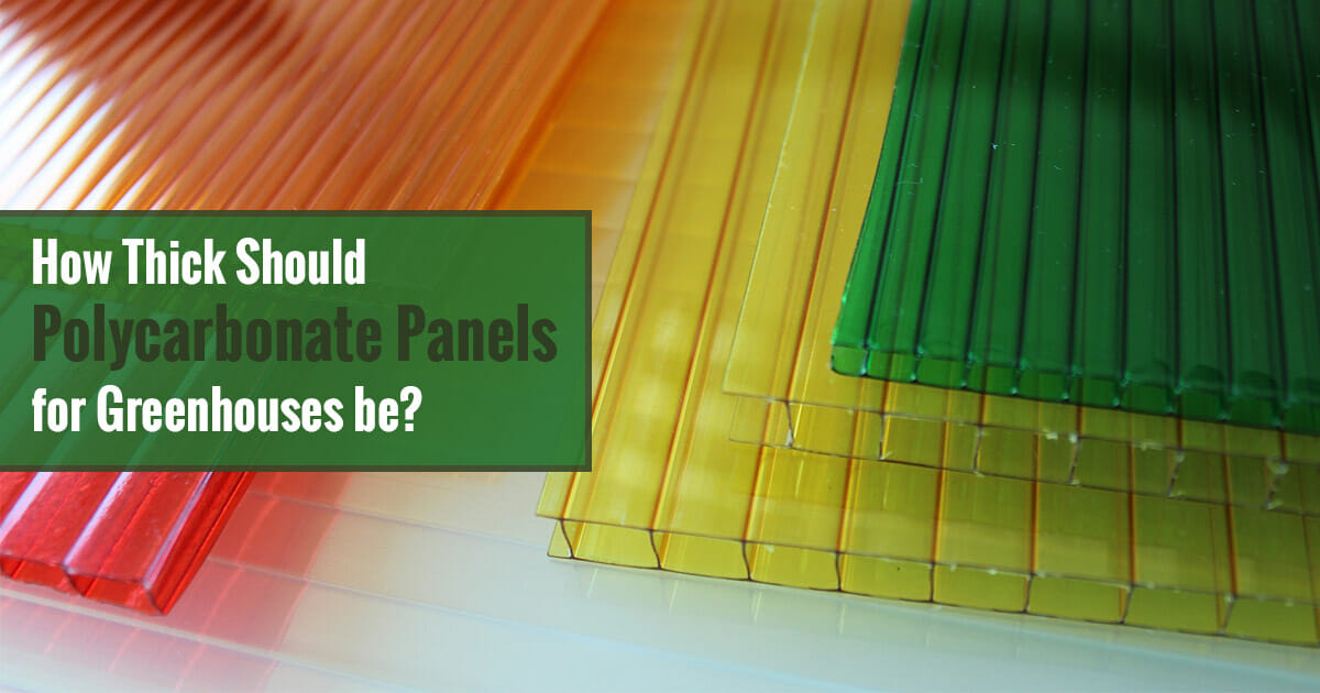 Various Polycarbonate panels of diverse thicknesses and the text: How Thick Should Polycarbonate Panels for Greenhouse be?