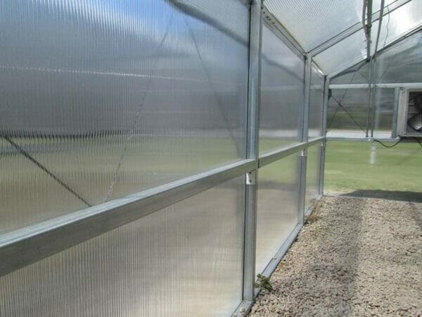 RSI Educational Greenhouse Polycarbonate Walls, interior view of greenhouse panels